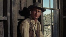 Paul Newman in Martin Ritt's 'Hombre'