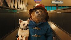 Paddington Bear comes to life in 'Paddington.'