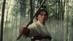 King Hu directs this classic of Chinese cinema