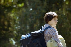 Michelle Williams stars in the film by Kelly Reichardt