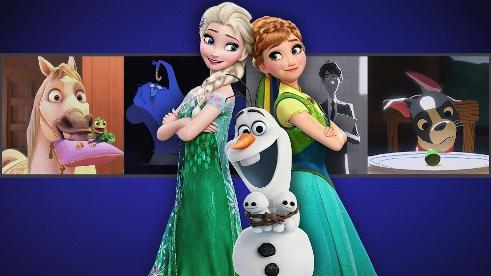 Frozen Fever is one of a dozen films on Walt Disney Animation Studios Short Films Collection, now streaming on Netflix.