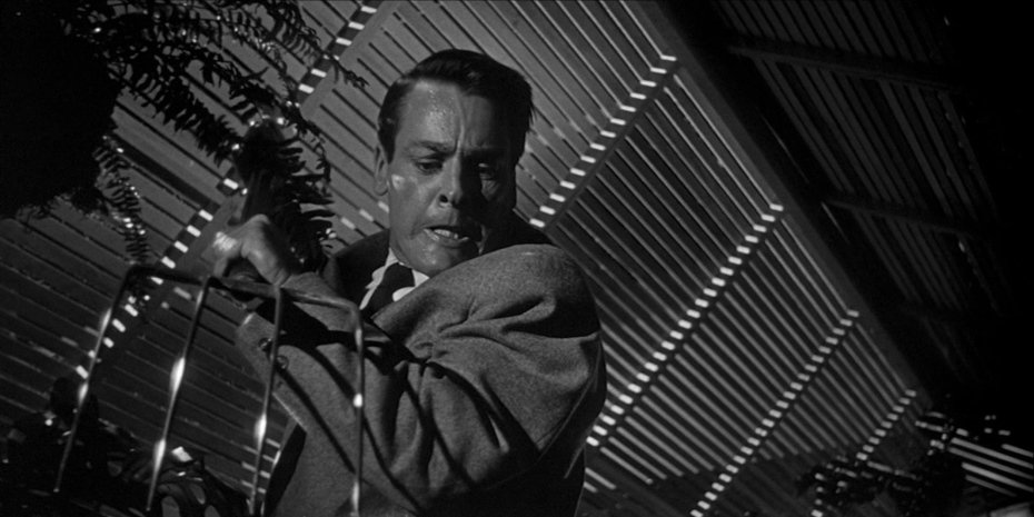 Kevin McCarthy stars in Don Siegel's 1956 'Invasion of the Body Snatcher'