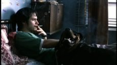 Gael García Bernal stars in Alejandro Gonzalez Inarritu's breakthrough drama from Mexico